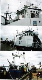 Sea Tamar